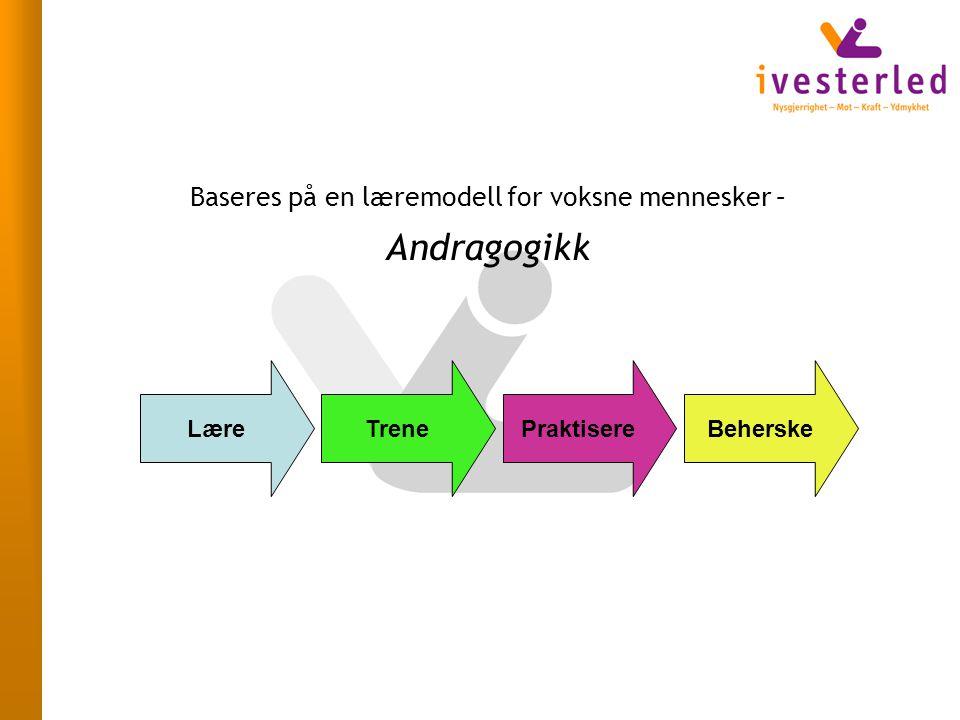 Baseres på en læremodell for voksne mennesker – Andragogikk