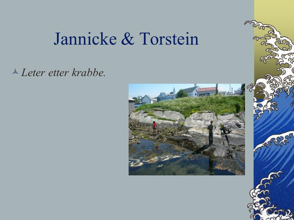 Jannicke & Torstein Leter etter krabbe.