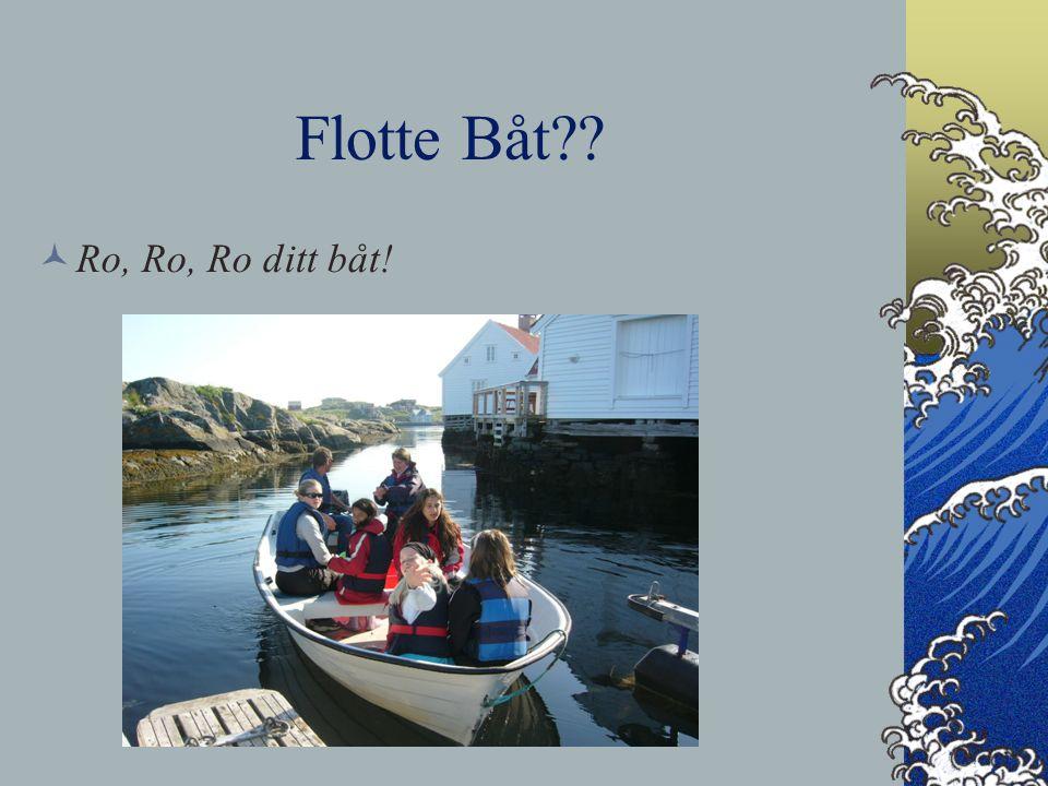 Flotte Båt Ro, Ro, Ro ditt båt!