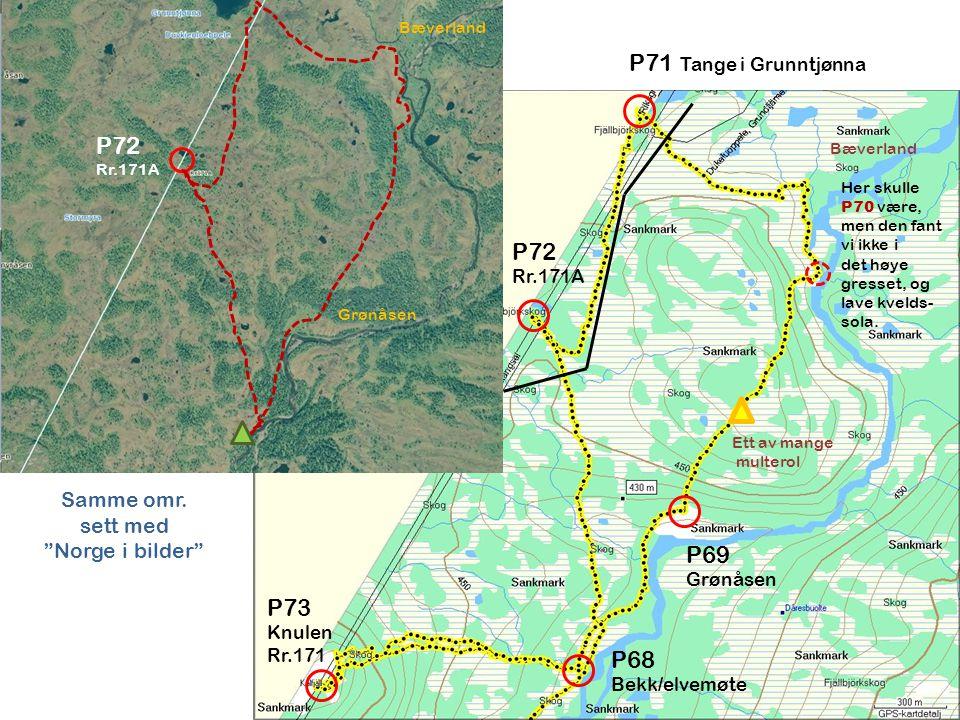 P71 Tange i Grunntjønna P72 P72 P69 P73 P68 Samme omr. sett med
