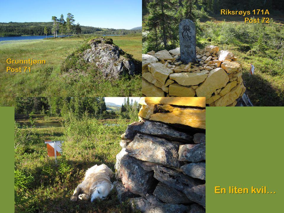 Riksrøys 171A Post 72 Grunntjønn Post 71 En liten kvil…
