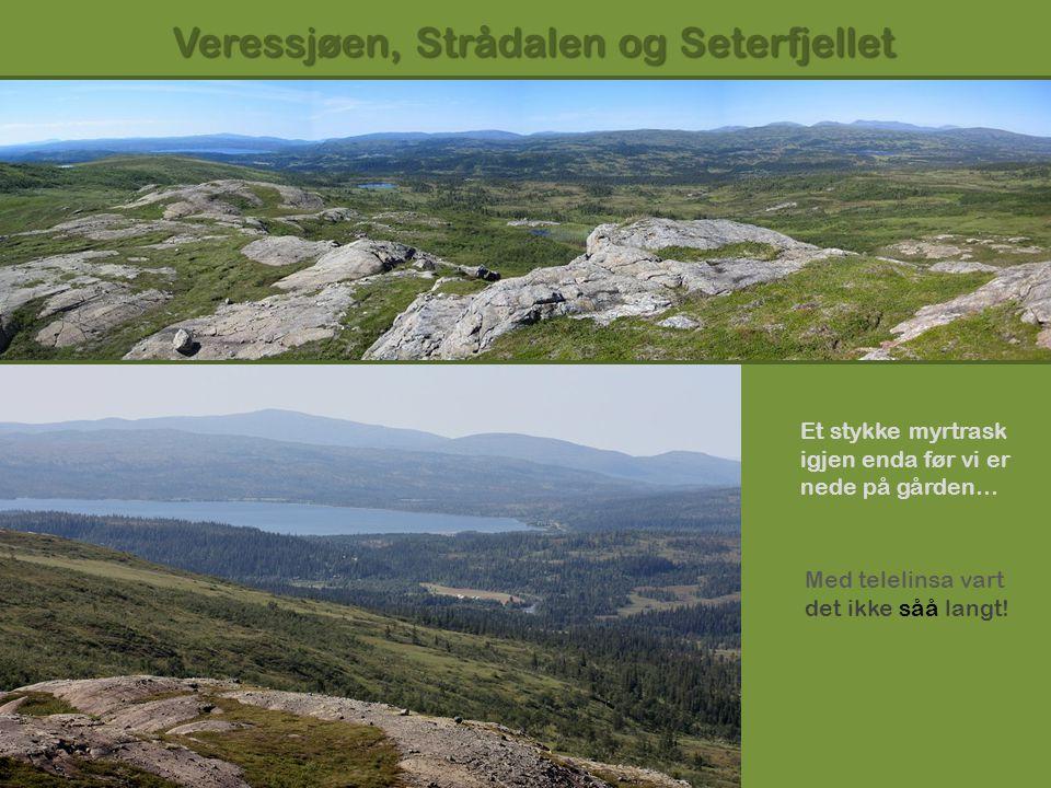 Veressjøen, Strådalen og Seterfjellet