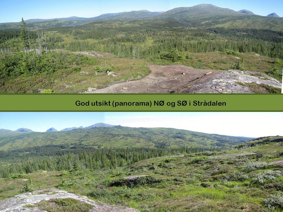 God utsikt (panorama) NØ og SØ i Strådalen