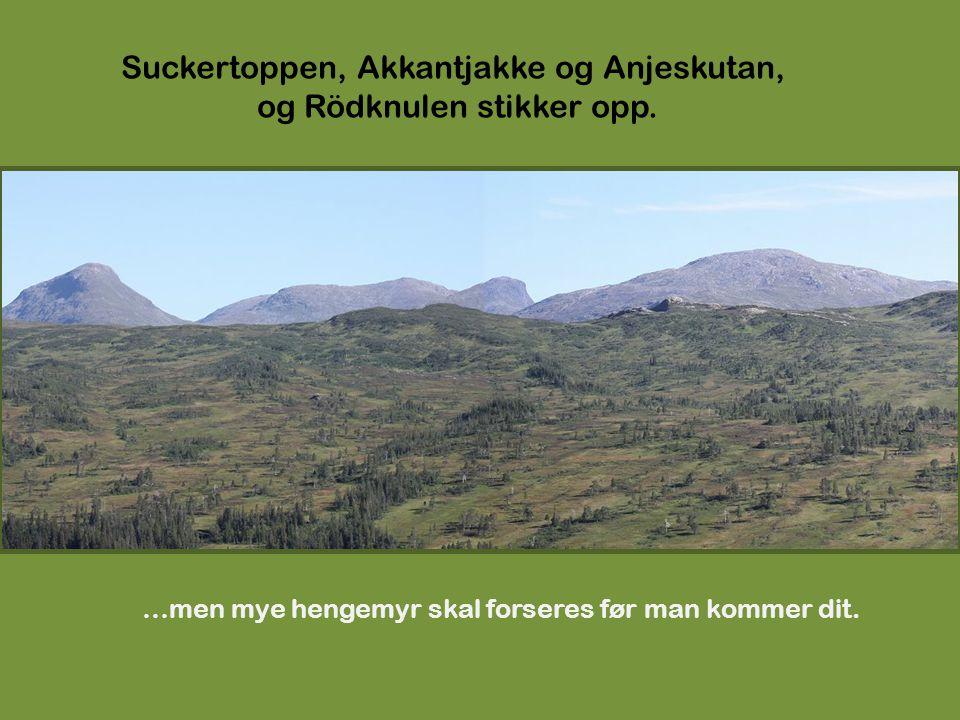 Suckertoppen, Akkantjakke og Anjeskutan, og Rödknulen stikker opp.