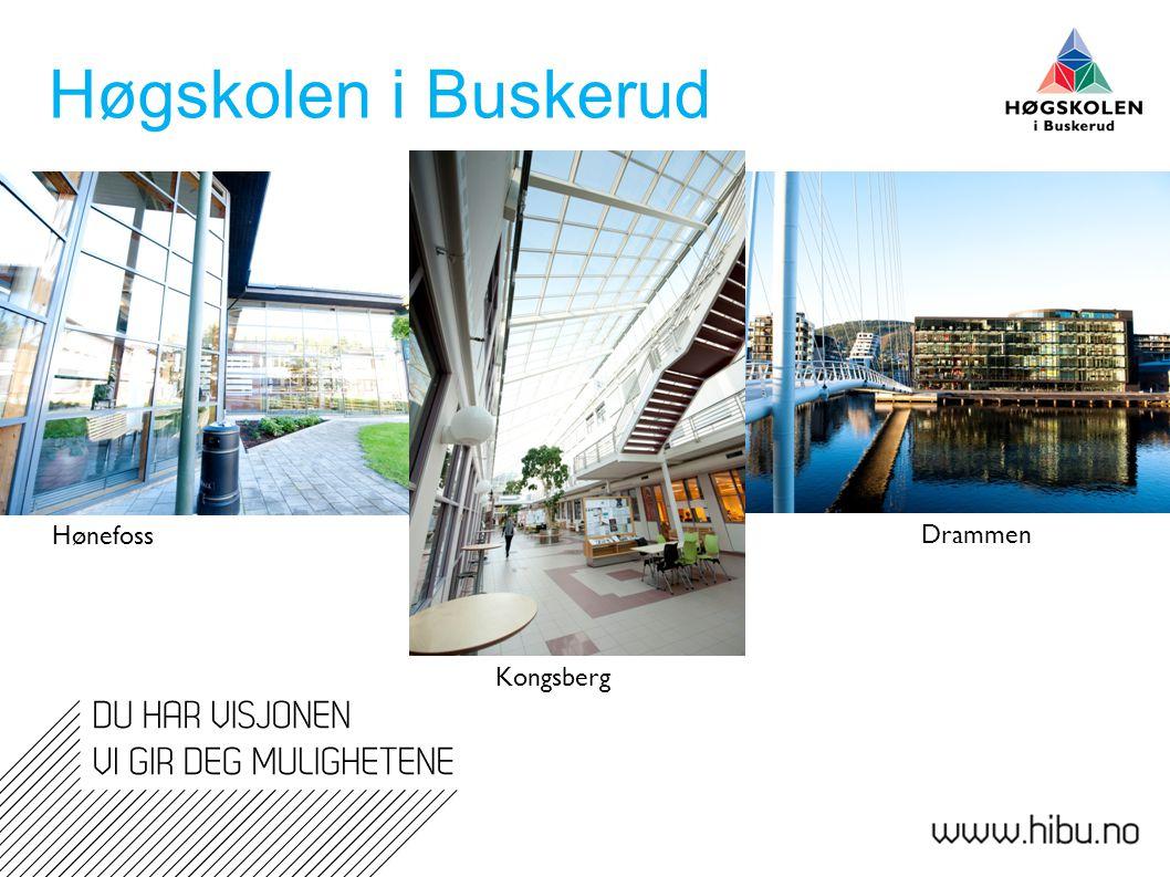 Høgskolen i Buskerud Hønefoss. Drammen.