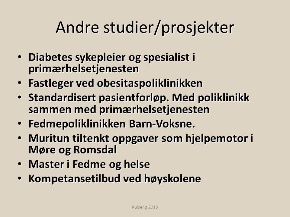 Andre studier/prosjekter