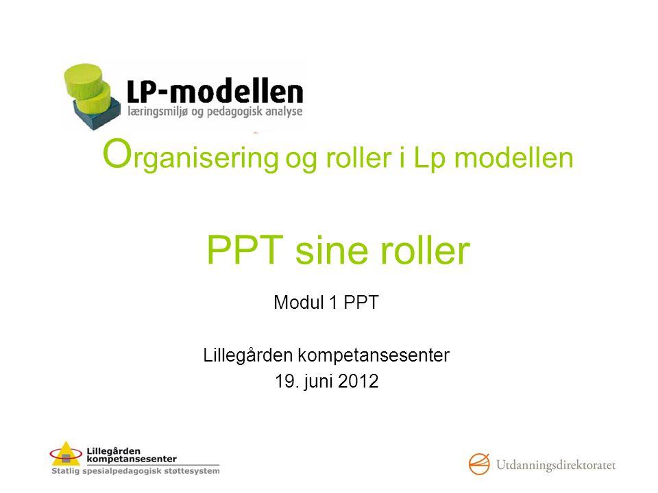 Organisering og roller i Lp modellen PPT sine roller