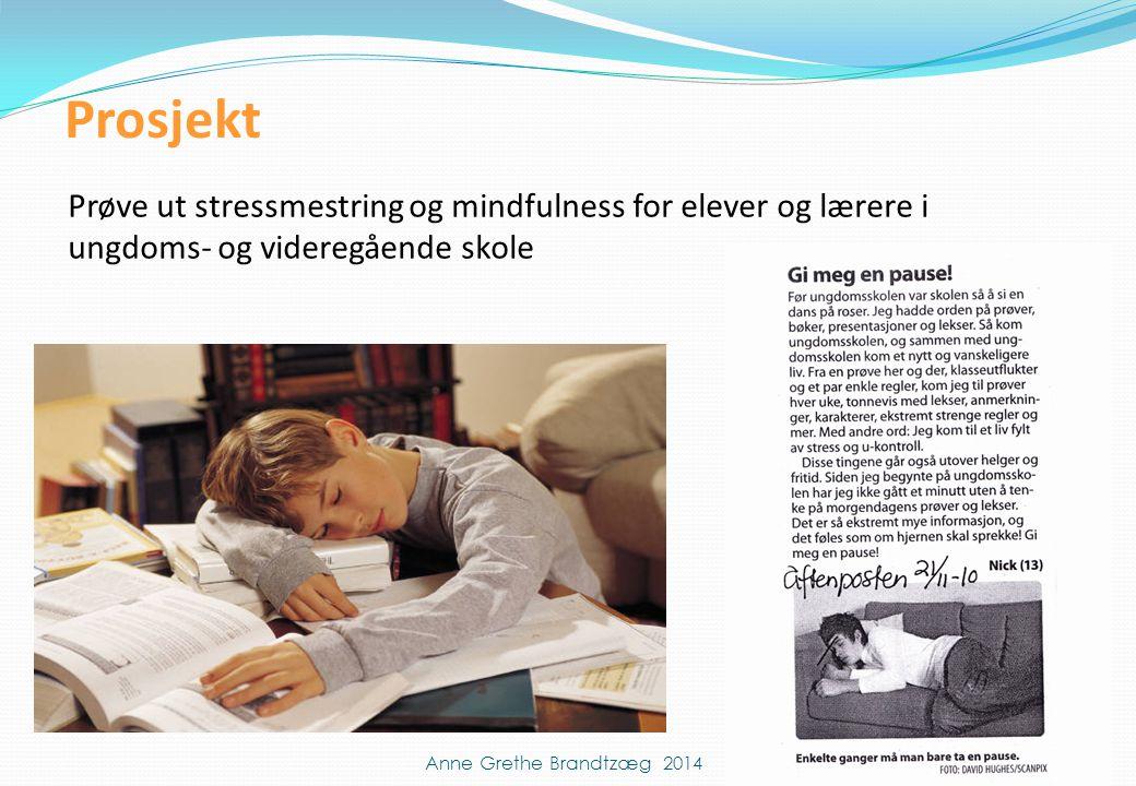 Prosjekt Prøve ut stressmestring og mindfulness for elever og lærere i ungdoms- og videregående skole.
