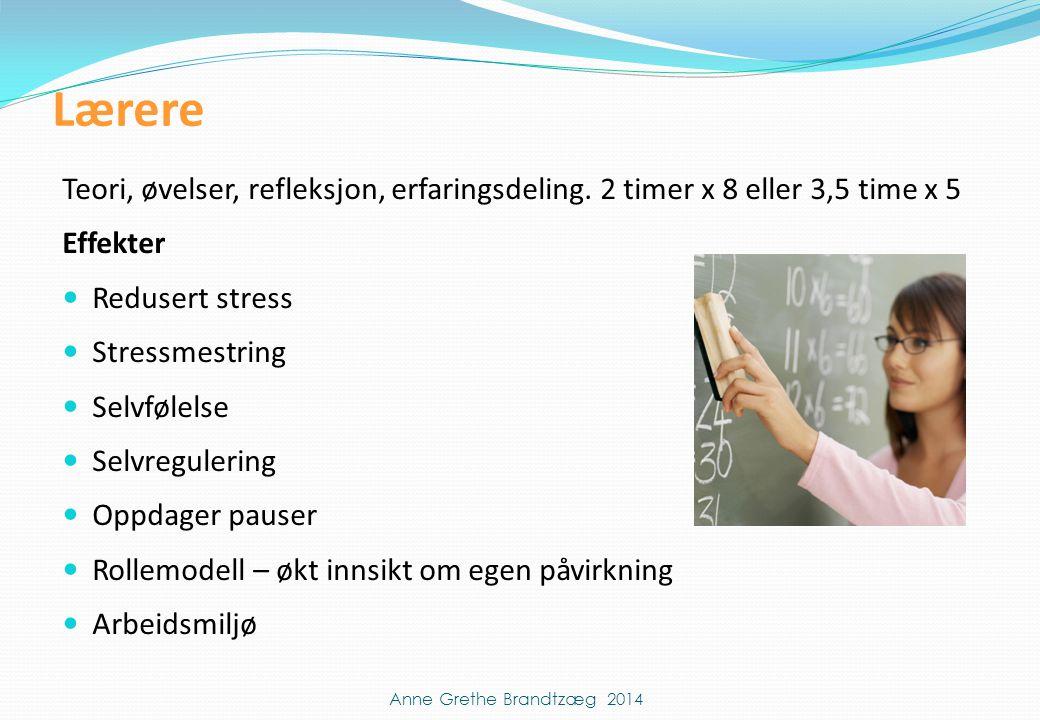 Lærere Teori, øvelser, refleksjon, erfaringsdeling. 2 timer x 8 eller 3,5 time x 5. Effekter. Redusert stress.