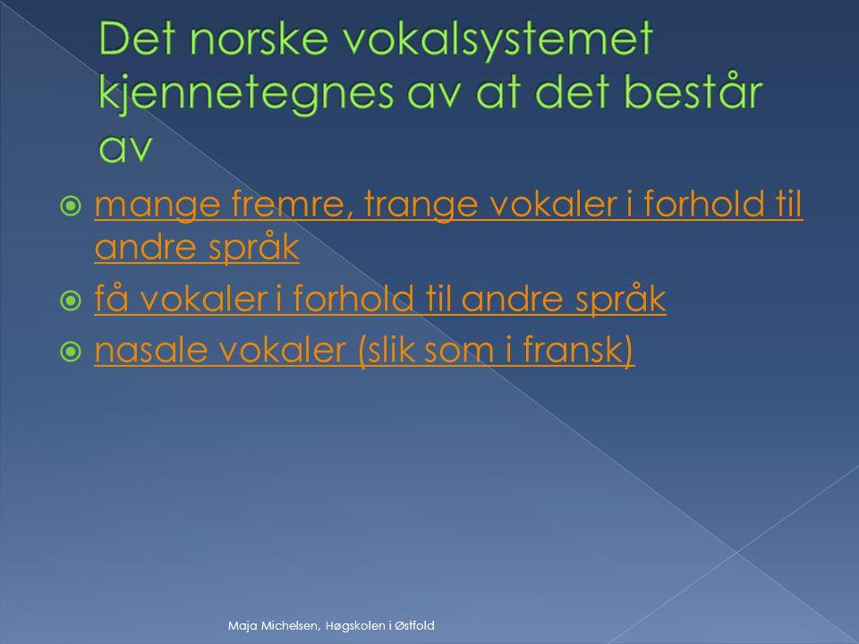 Det norske vokalsystemet kjennetegnes av at det består av