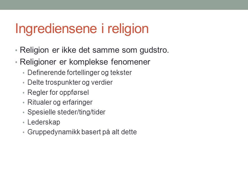 Ingrediensene i religion