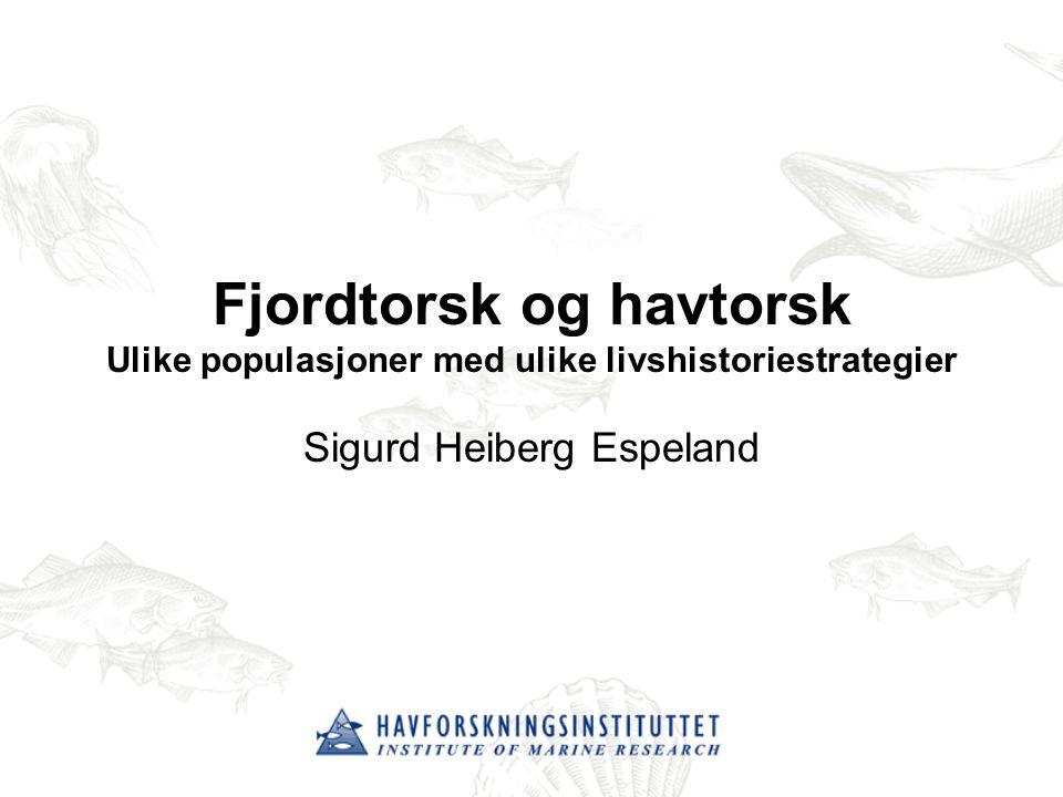 Sigurd Heiberg Espeland