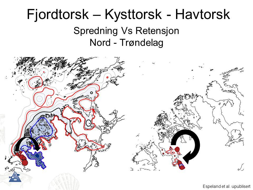 Fjordtorsk – Kysttorsk - Havtorsk