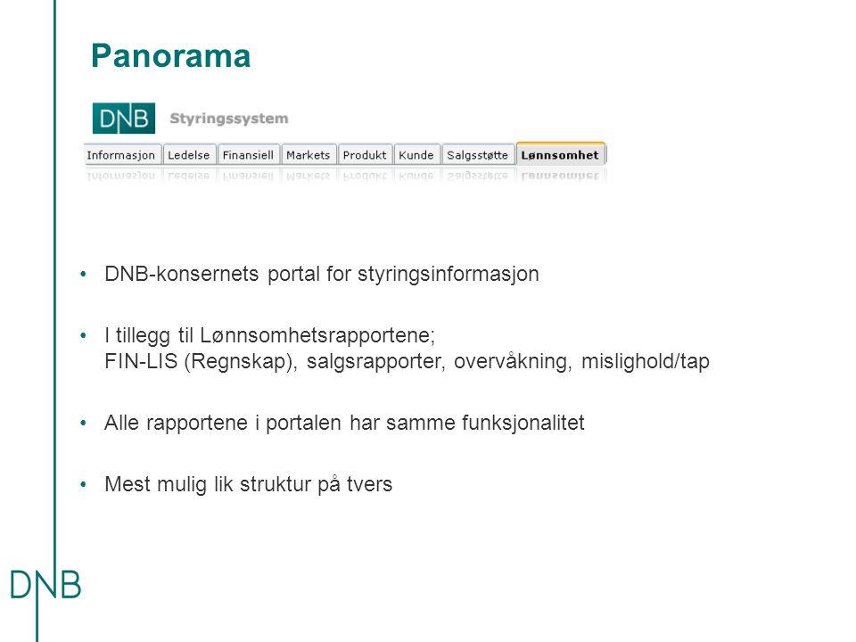 Panorama DNB-konsernets portal for styringsinformasjon