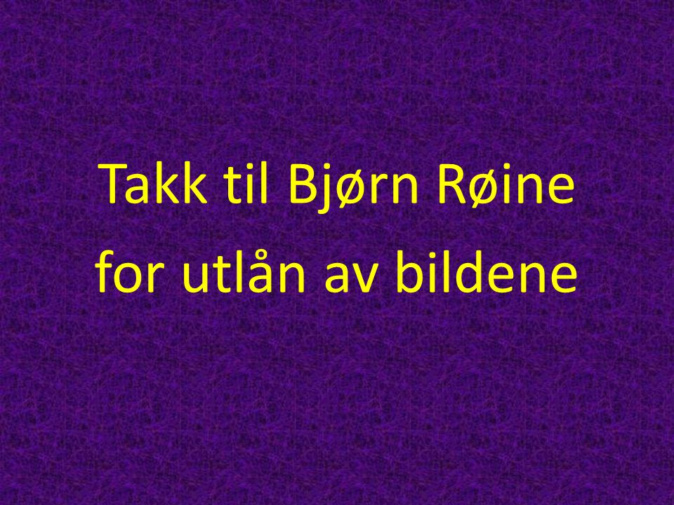 Takk til Bjørn Røine for utlån av bildene