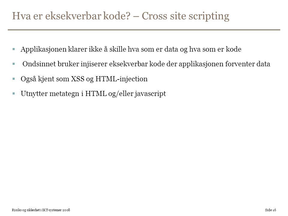 Hva er eksekverbar kode – Cross site scripting