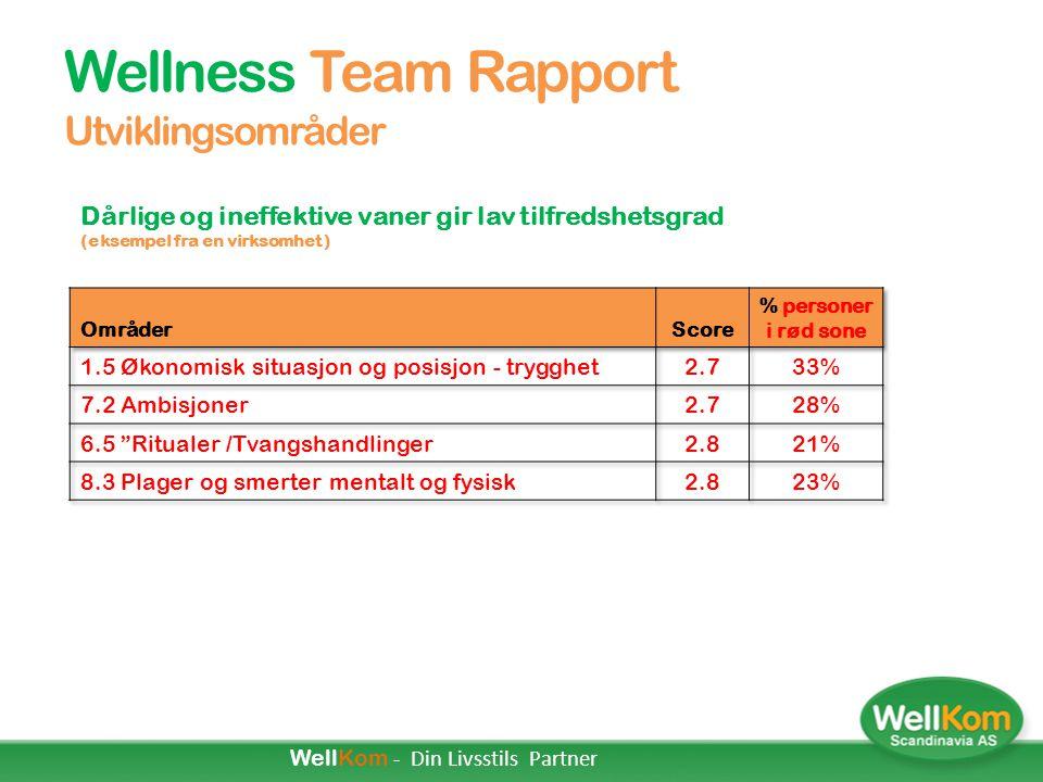 Wellness Team Rapport Utviklingsområder