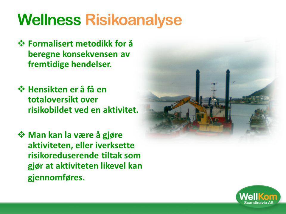 Wellness Risikoanalyse