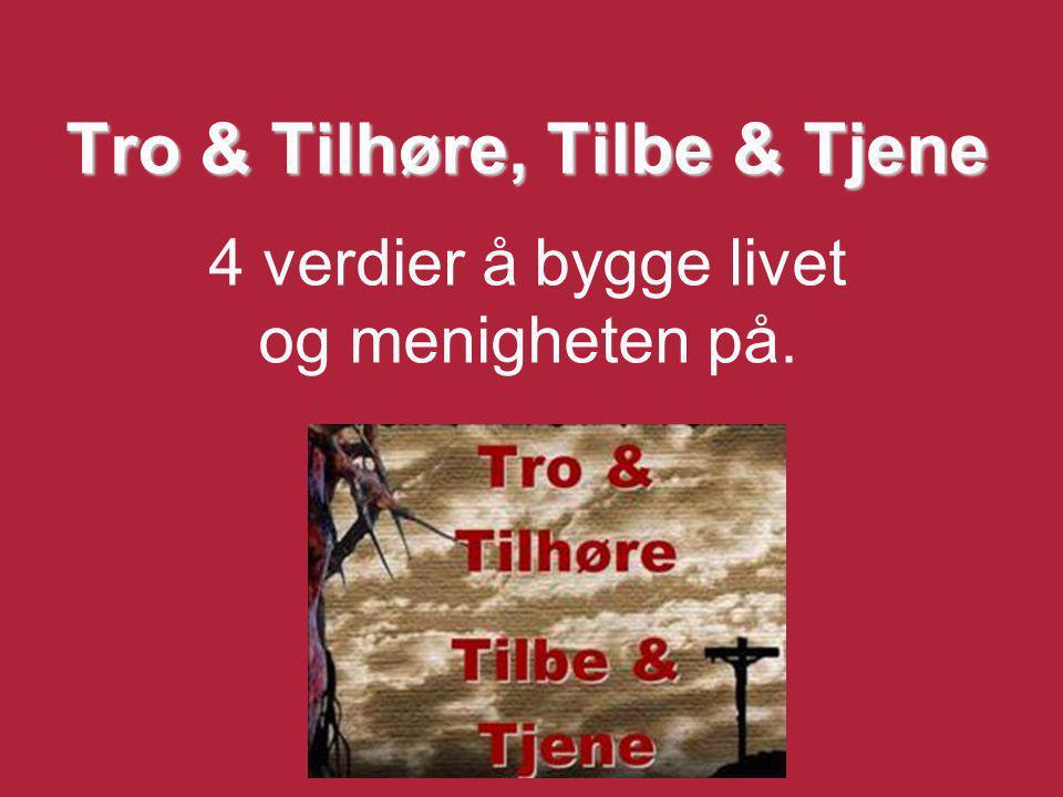 Tro & Tilhøre, Tilbe & Tjene 4 verdier å bygge livet og menigheten på.