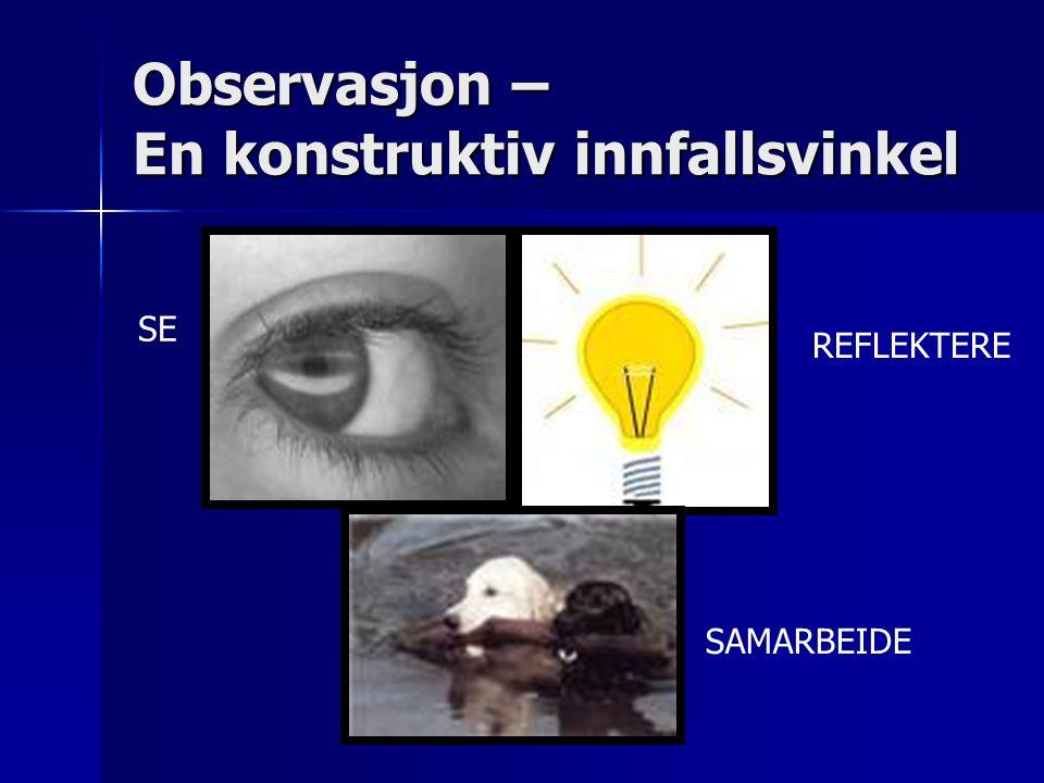 Observasjon – En konstruktiv innfallsvinkel