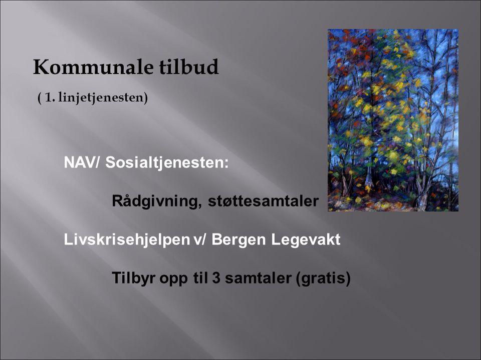 Kommunale tilbud ( 1. linjetjenesten) NAV/ Sosialtjenesten: