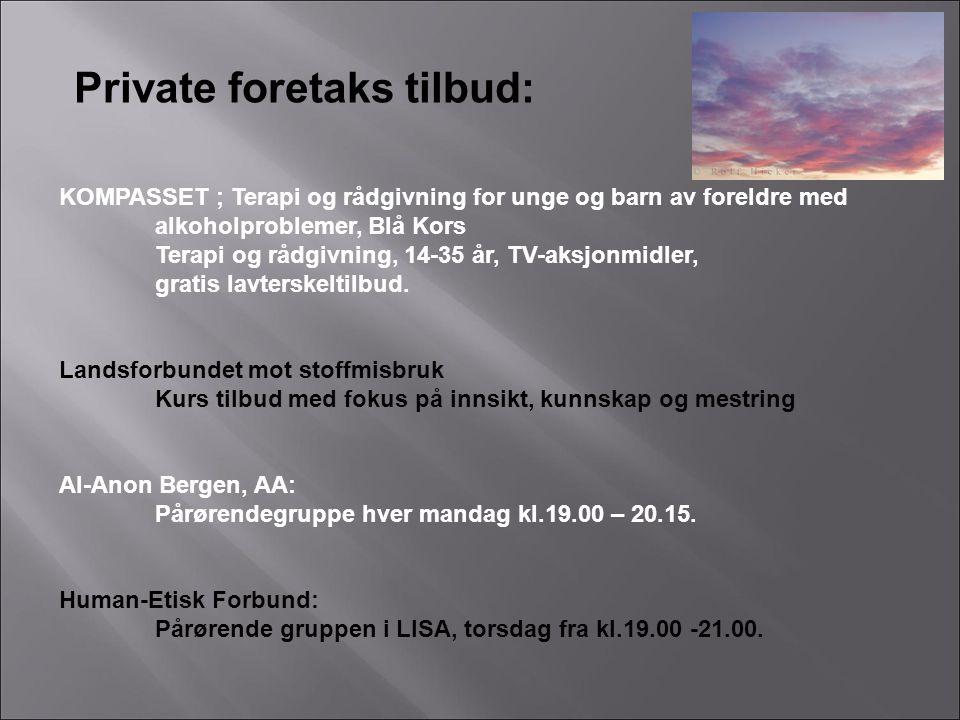 Private foretaks tilbud: