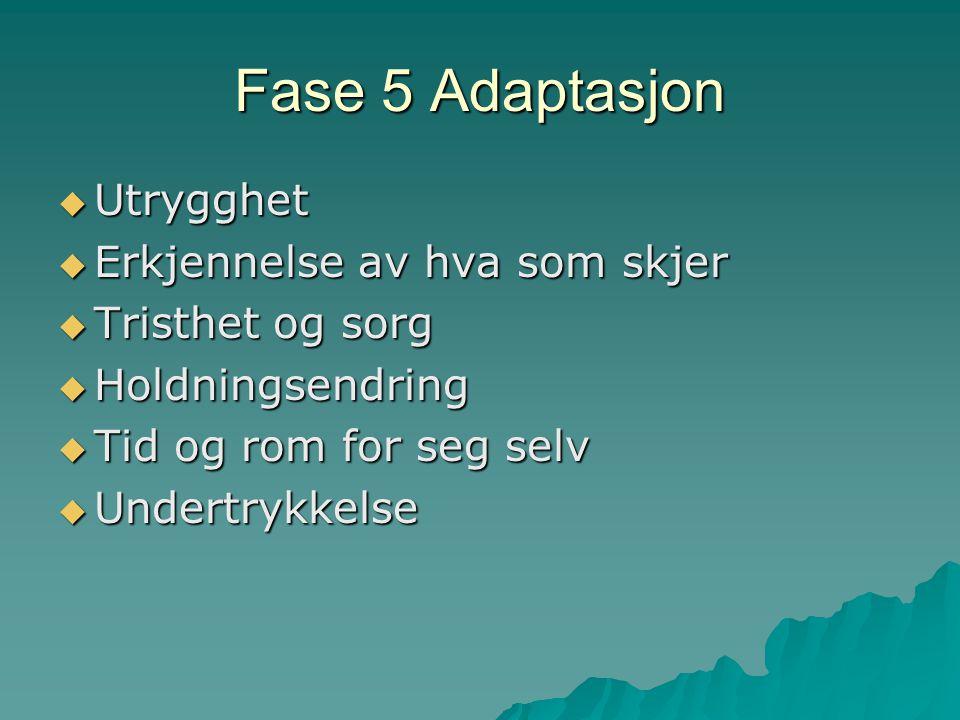 Fase 5 Adaptasjon Utrygghet Erkjennelse av hva som skjer