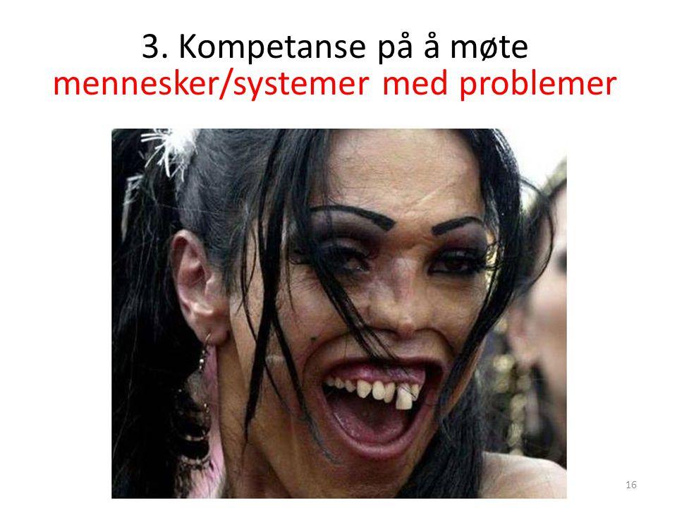 3. Kompetanse på å møte mennesker/systemer med problemer