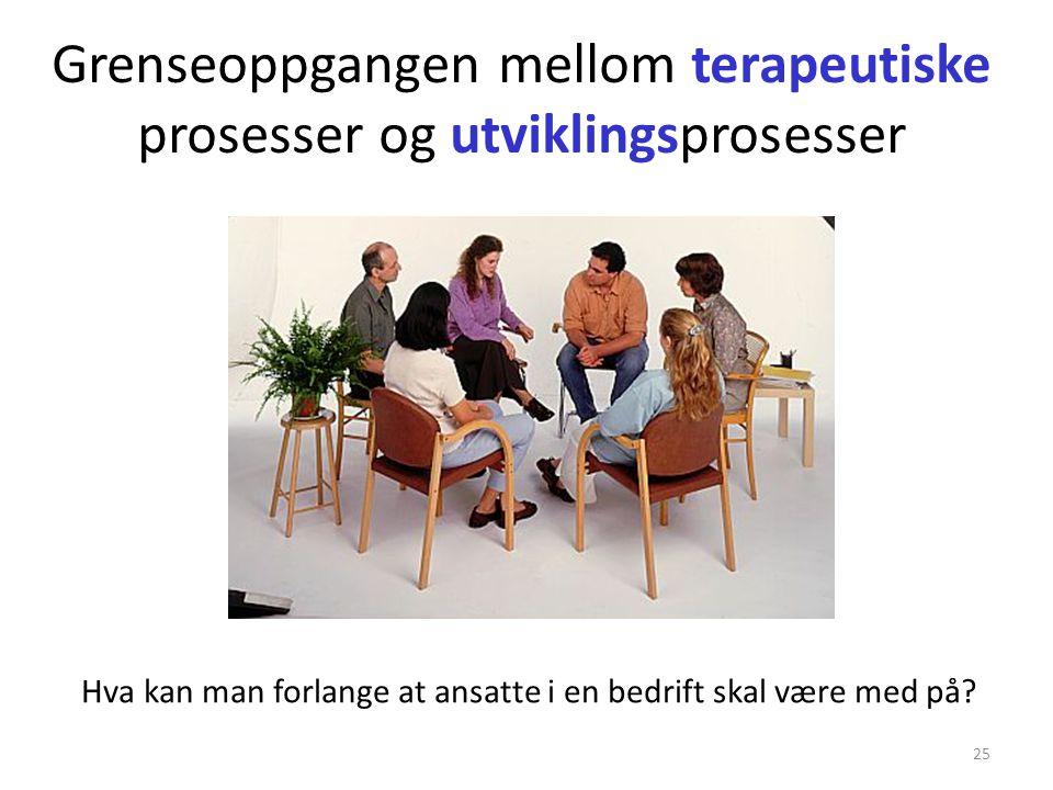 Grenseoppgangen mellom terapeutiske prosesser og utviklingsprosesser