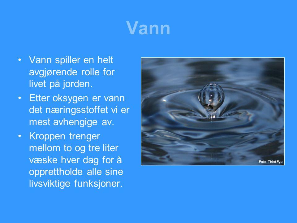 Vann Vann spiller en helt avgjørende rolle for livet på jorden.