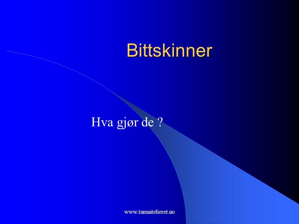 Bittskinner Hva gjør de www.tannatelieret.no