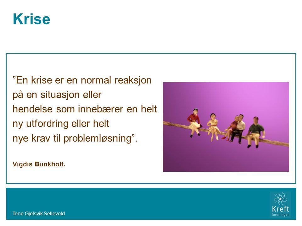 Krise En krise er en normal reaksjon på en situasjon eller