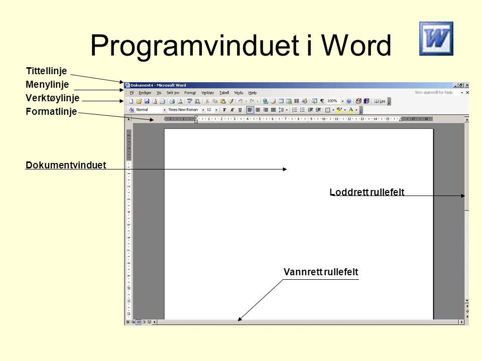 Programvinduet i Word Tittellinje Menylinje Verktøylinje Formatlinje