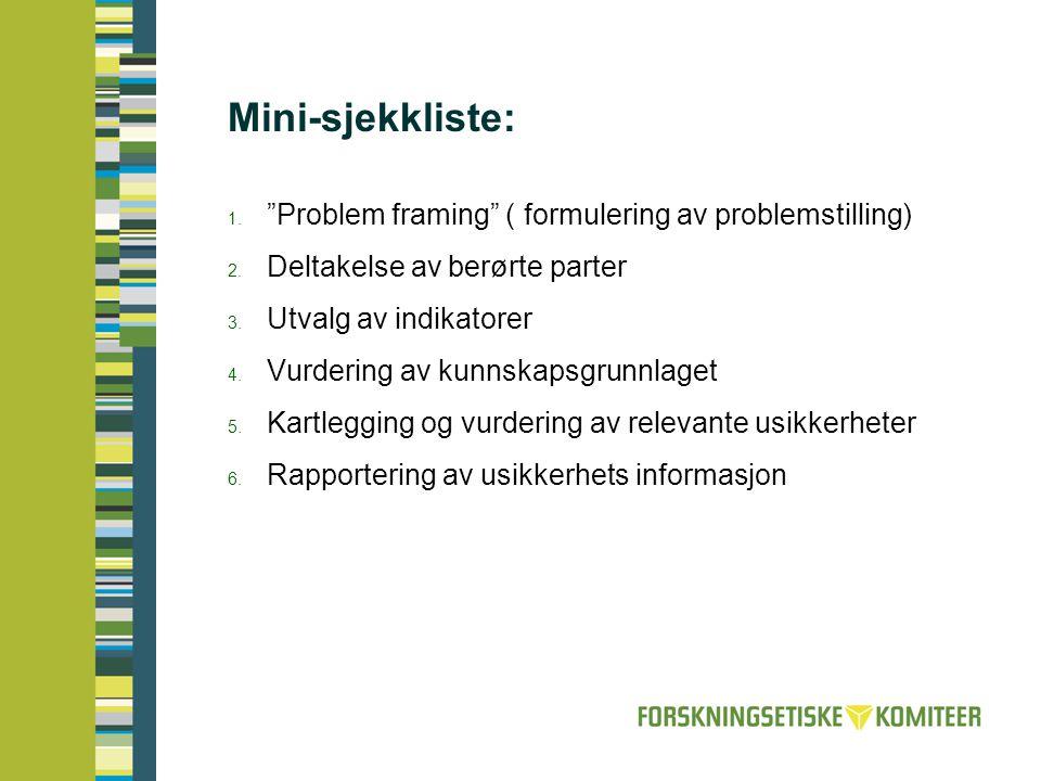 Mini-sjekkliste: Problem framing ( formulering av problemstilling)