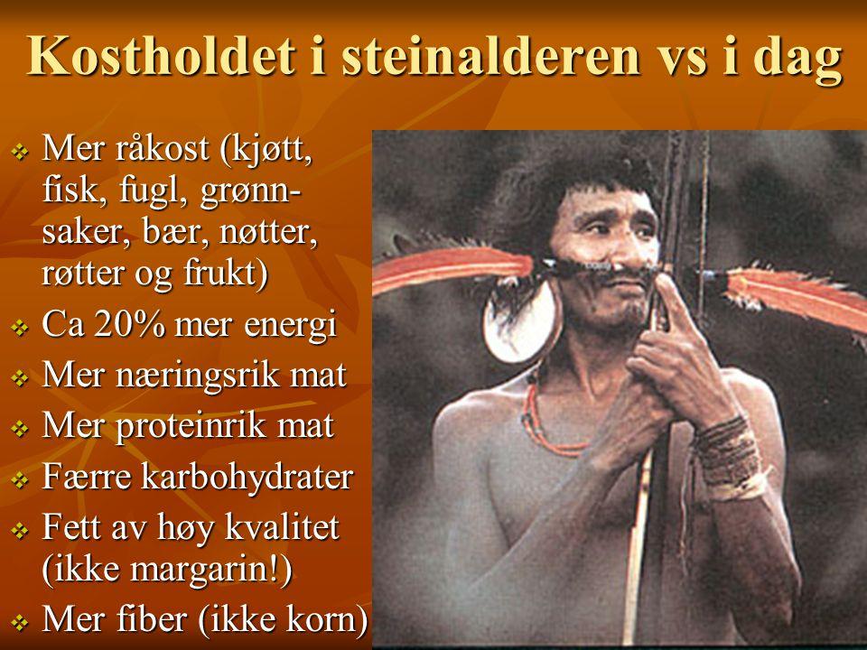 Kostholdet i steinalderen vs i dag