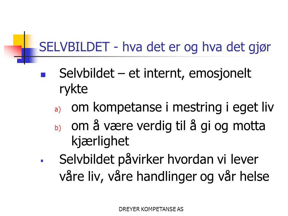 SELVBILDET - hva det er og hva det gjør