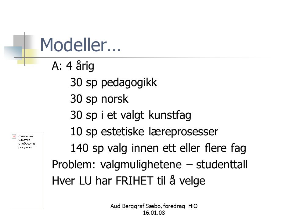 Aud Berggraf Sæbø, foredrag HiO 16.01.08