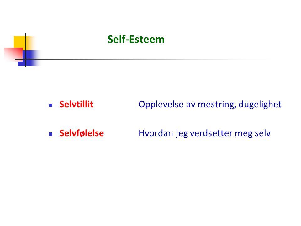 Self-Esteem Selvtillit Opplevelse av mestring, dugelighet