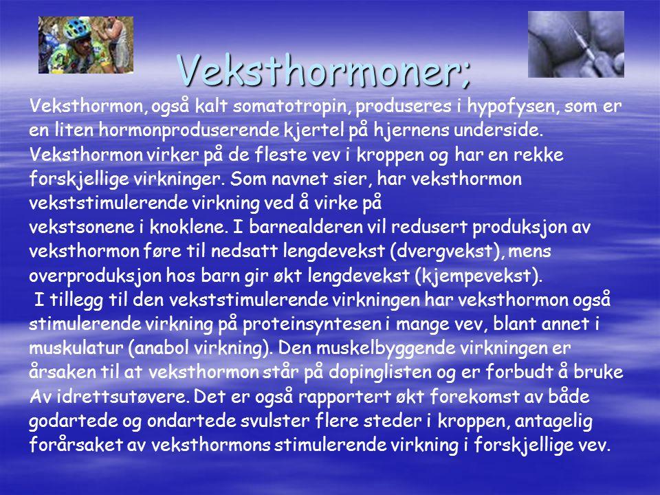 Veksthormoner; Veksthormon, også kalt somatotropin, produseres i hypofysen, som er. en liten hormonproduserende kjertel på hjernens underside.