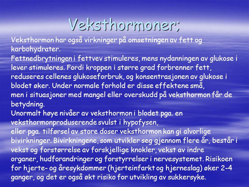 Veksthormoner; Veksthormon har også virkninger på omsetningen av fett og. karbohydrater.