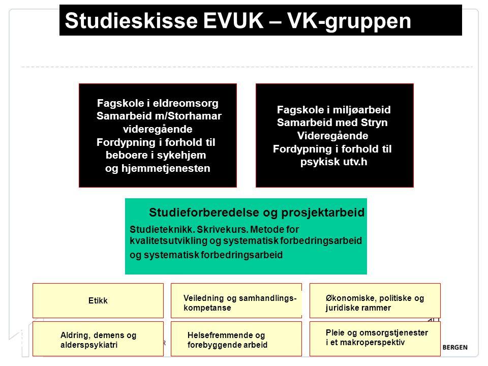 Studieskisse EVUK – VK-gruppen