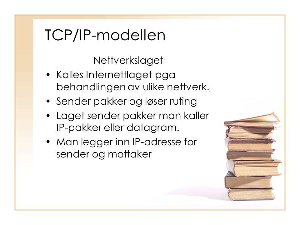 TCP/IP-modellen Nettverkslaget