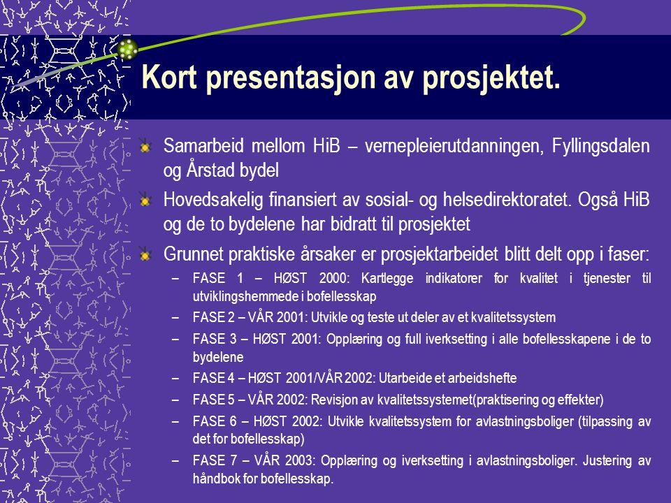 Kort presentasjon av prosjektet.
