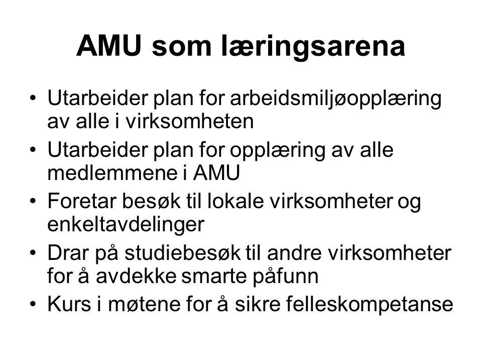 AMU som læringsarena Utarbeider plan for arbeidsmiljøopplæring av alle i virksomheten. Utarbeider plan for opplæring av alle medlemmene i AMU.