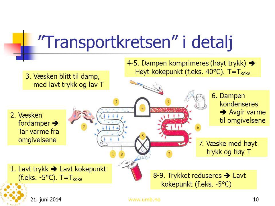 Transportkretsen i detalj