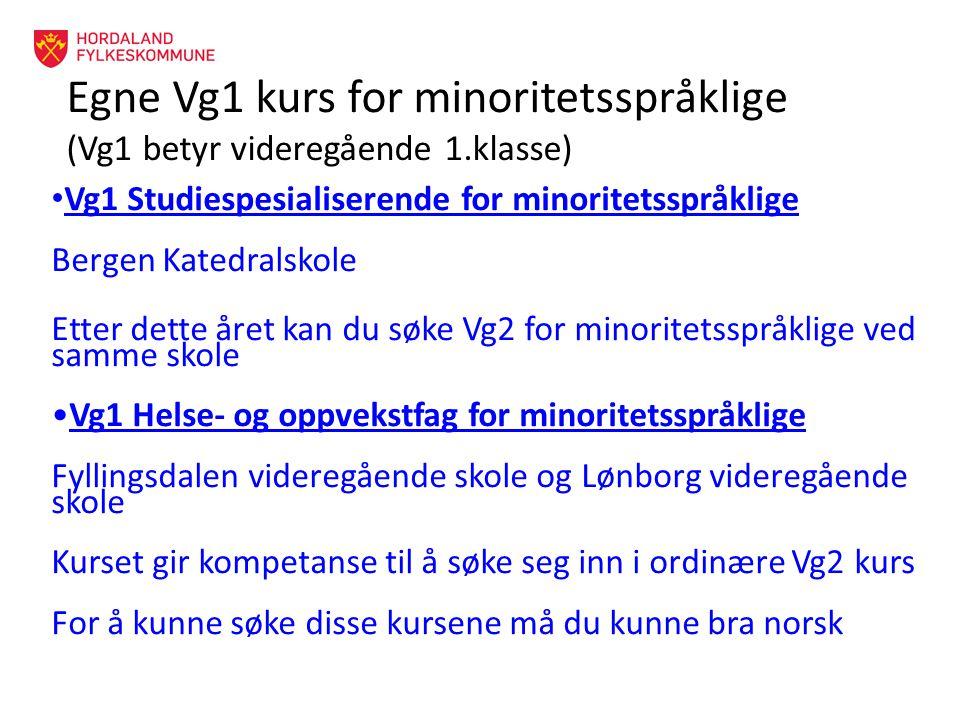 Egne Vg1 kurs for minoritetsspråklige (Vg1 betyr videregående 1