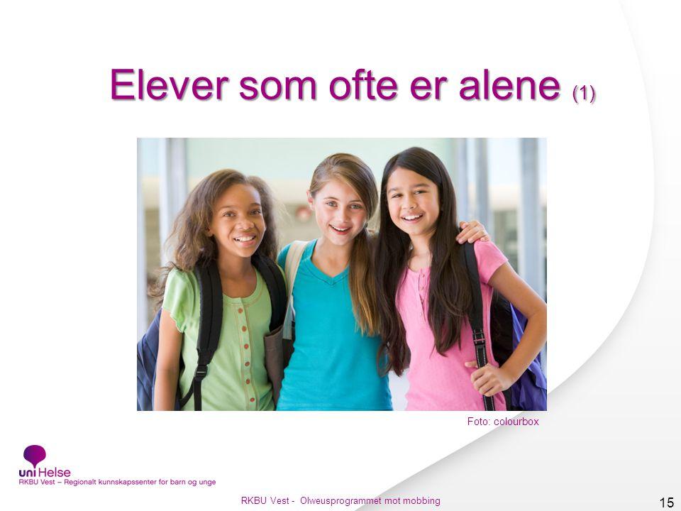 Elever som ofte er alene (1)