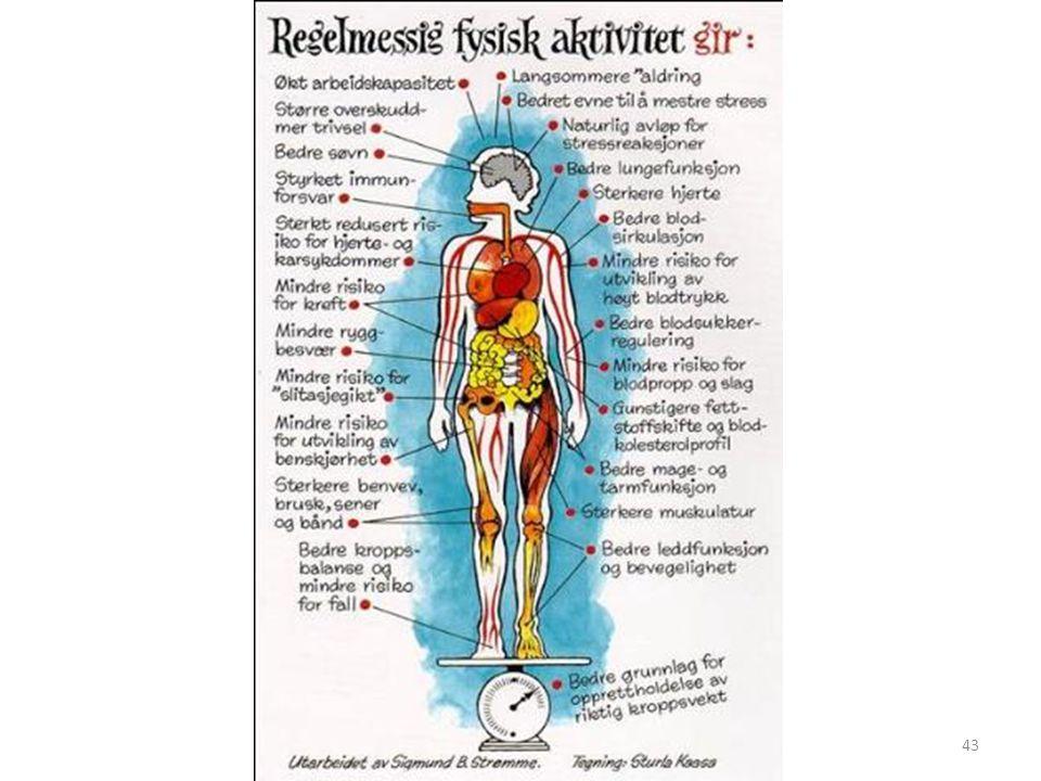 Illustrasjonen viser de mange helsefordelene man får ved å trene