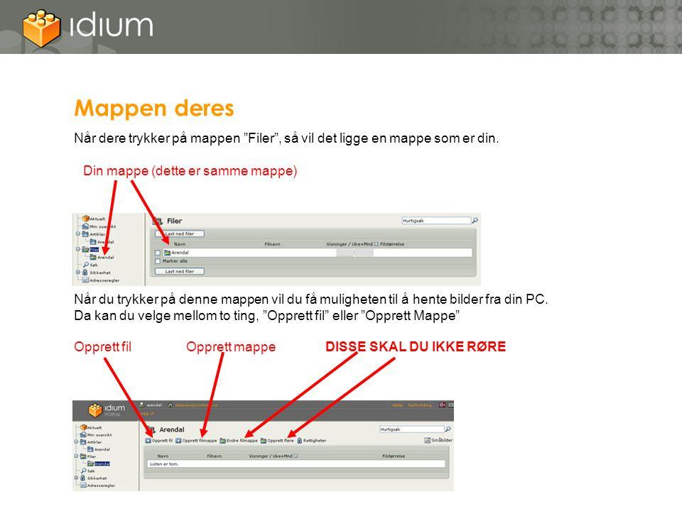 Mappen deres Når dere trykker på mappen Filer , så vil det ligge en mappe som er din. Din mappe (dette er samme mappe)