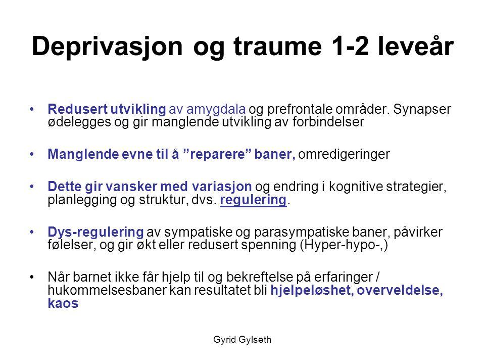 Deprivasjon og traume 1-2 leveår